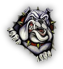 Summerfield Bulldogs Schedule Analysis